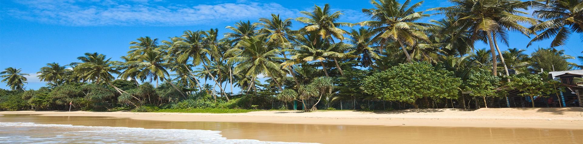 Sri Lankan Getaway
